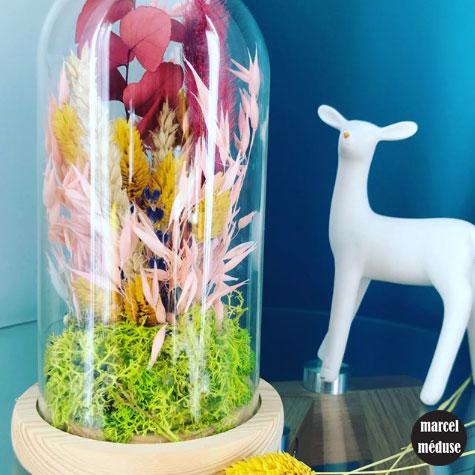Atelier fleurs séchées sous cloche en verre